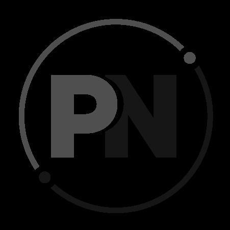 ProNetworker-Favicon-gray
